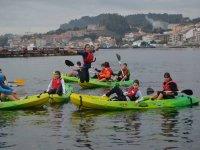 A group of kayaks