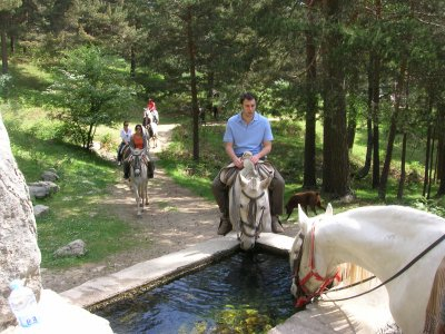 Horse ride through Cercedilla Pine forest. 1 hour.