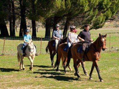 Escapada a caballo en Grazalema con alojamiento