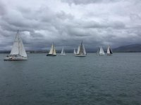 Regatta on a cloudy day