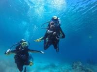 Discover Scuba Diving Parque Natural Dragonera