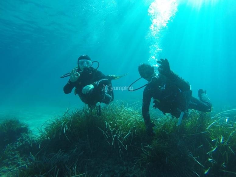 夫妇在海上潜水练习的技术