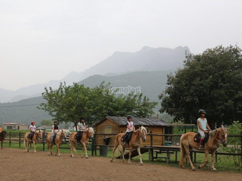 Passeggiata a cavallo tranquilla
