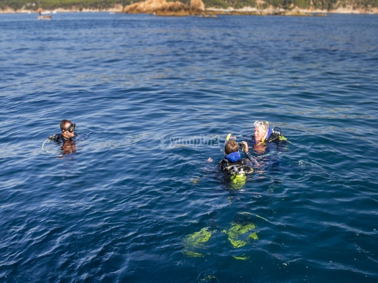 Divers in the sea