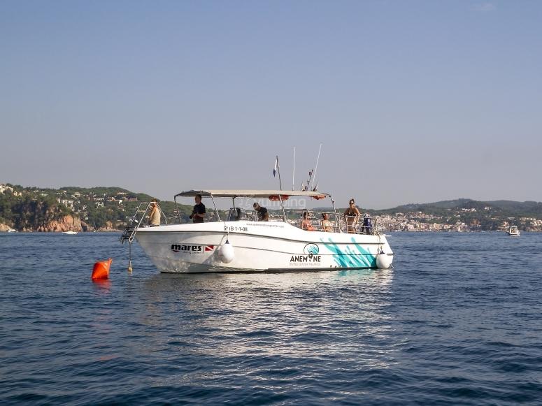 莫雷纳我们的船
