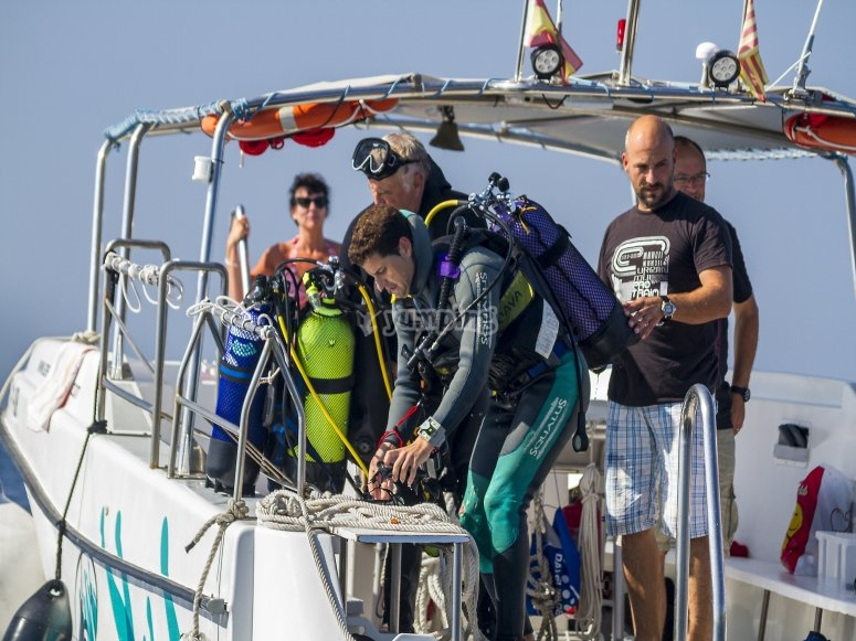 潜水员夫妇准备在水八达通