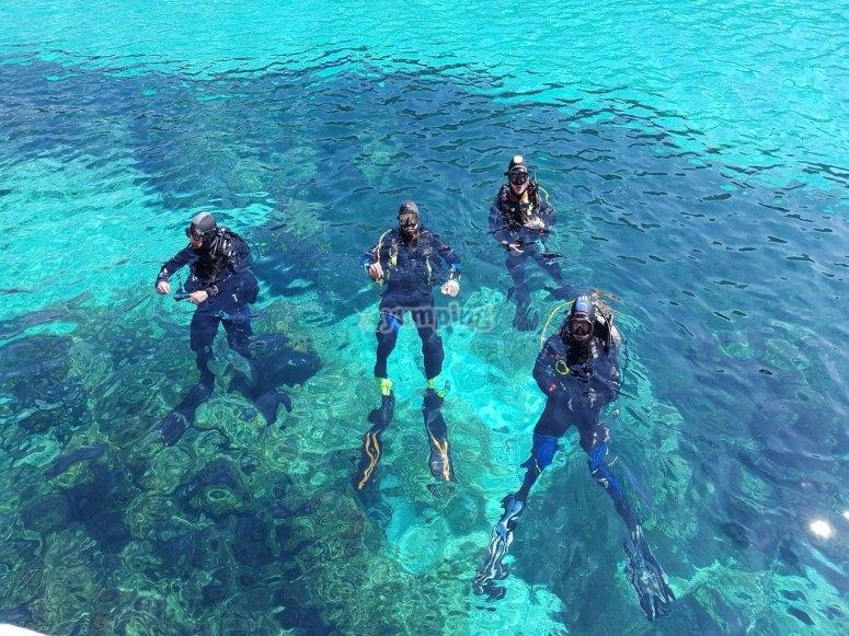 Divers潜水坦克在清澈的水中