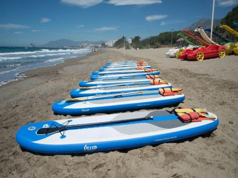 Tablas de paddle surf en la arena