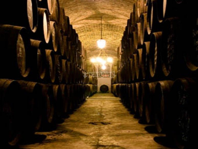 参观我们的葡萄酒厂