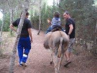 paseo en burro