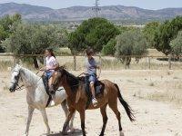 Paseos a caballo