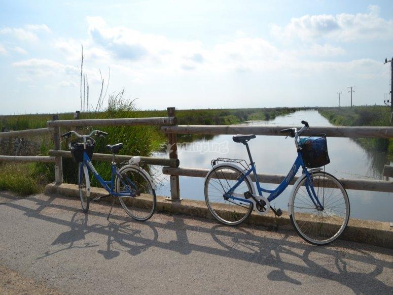 Ruta en bici por el Ebro
