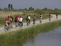 Ciclistas en el río Ebro