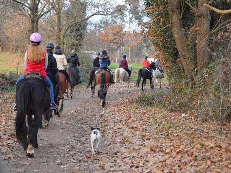 Aprende a montar a caballo en Burgos