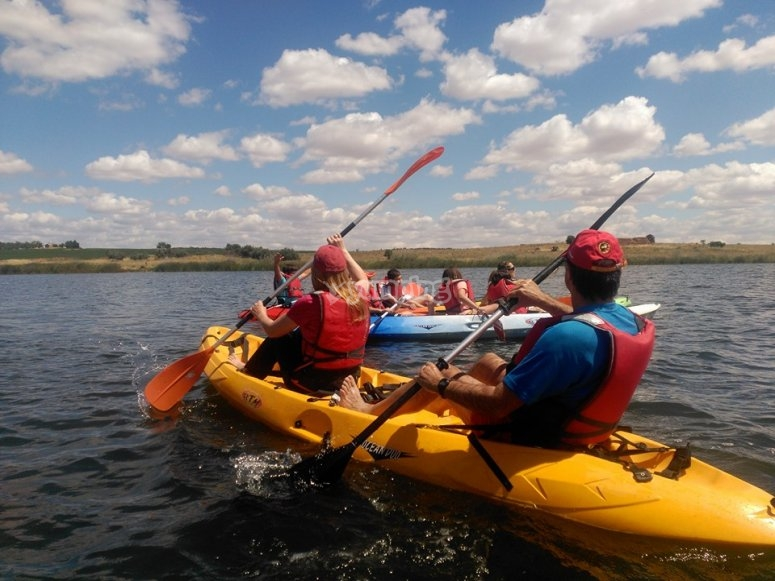 Conduce kayak por El Piélago