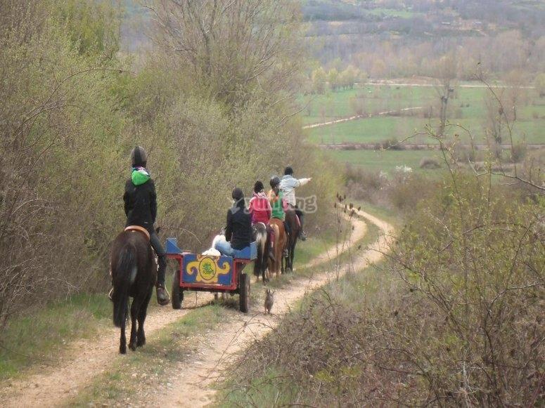 骑山--999-骑马装备