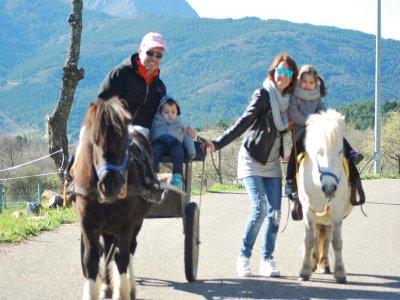 Actividad familiar con paseo en poni en Voznuevo