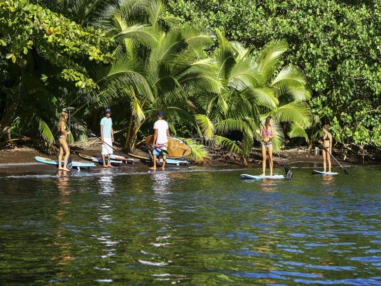 Paddle surf en grupo en Vera