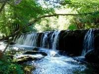 路线上的天然瀑布