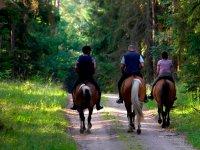 我们在马背上的美丽路线