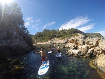 划桨冲浪路线Cala Sa Ferradura Ibiza 2小时