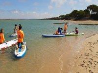 学习划桨在桨冲浪