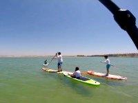 用桨冲浪板前进