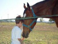 nino dando de comer a un caballo
