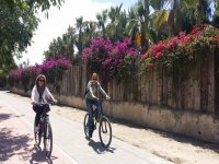 Paseo guiado en bicicleta la Huerta de Alicante