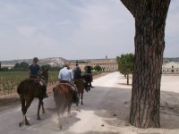 Los caminos de la vallisoletana localidad de Portillo.