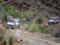 Prueba las excursiones en jeep