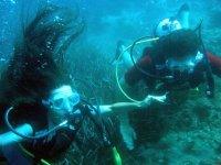 在我们的水域潜水