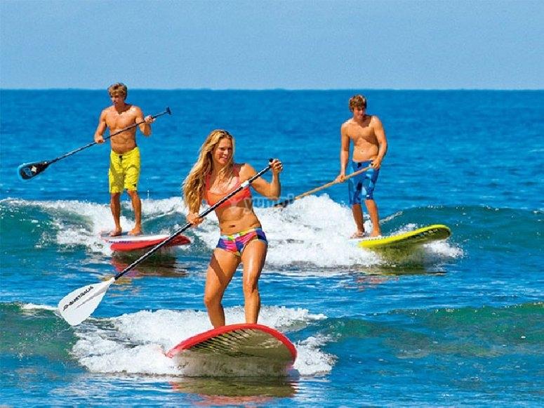 海滩上的划桨冲浪