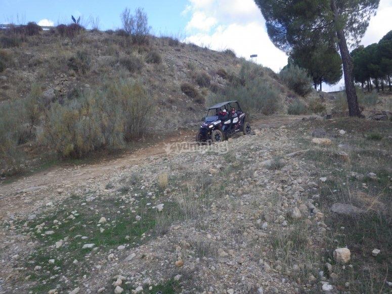 Recorre los caminos de la Serrania de Ronda