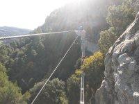 穿越西藏桥