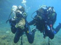 Con una roca submarina