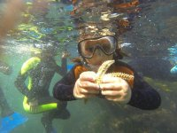 Snorkelling with a starfish