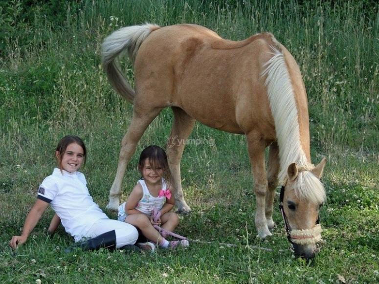 Sentadas junto al caballo
