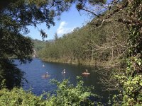 Paddle Surf Route in Navia 2 ore