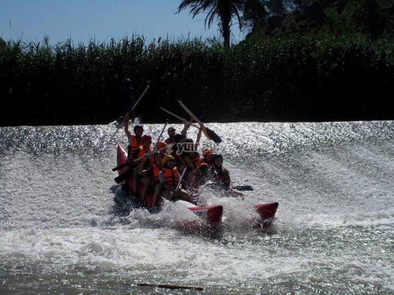 Banana boat doble