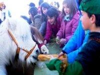 孩子们在学校农场玩得很开心。