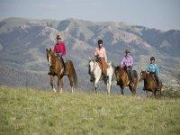 Paseo a caballo por Sierra de Gredos 90 minutos