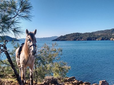 2-Days Horseback Route & 1 Night, Parador Oropesa