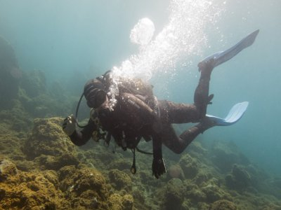 PADI Discover Scuba Diving in Tenerife - 5 Hours