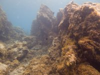Seabed in Canarias