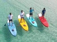 在桨冲浪板上