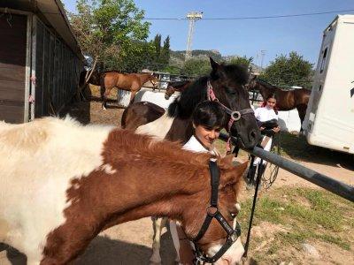 Excursión a caballo en Sierra de Tramontana 1 hora
