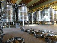 Sala de fermentacion