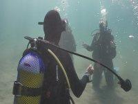 Bajo el agua del sur de Tenerife