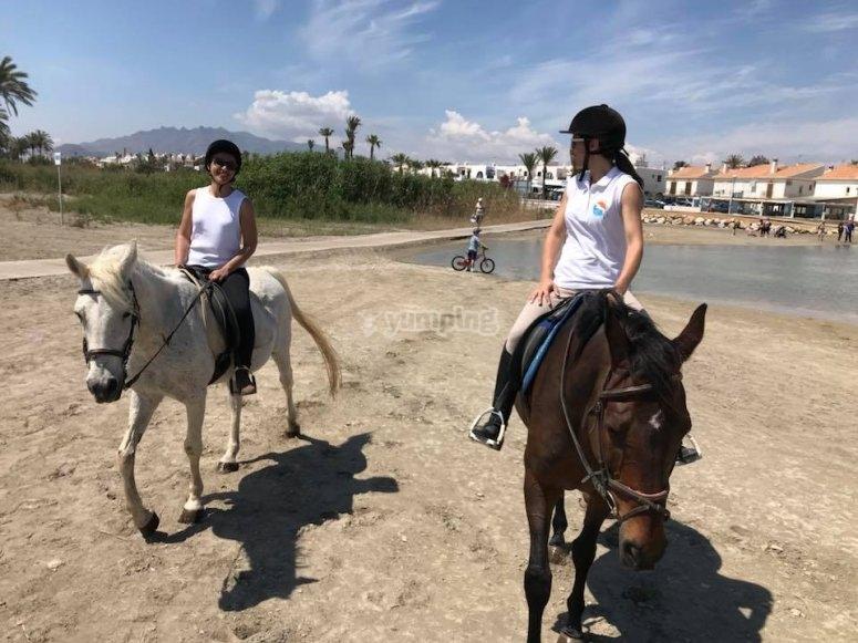 在沙滩上骑马